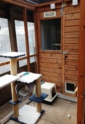A suite at Pinewood Cattery